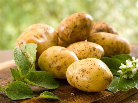 cuisiner des pommes de terre nouvelles les pommes de terre mont d or méli mélo gourmand