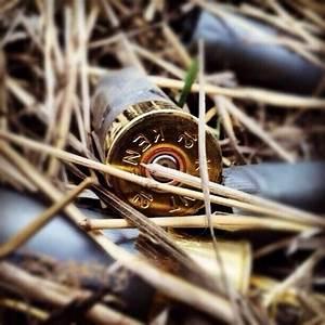 12 gauge shotgun shell   Country   Pinterest   Shotgun ...