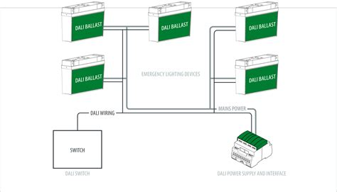 Dali Lighting Control Experts Amped Automation Can Help
