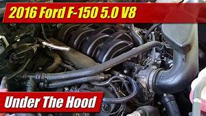 Under The Hood  2016 Ford F-150 5 0 V8