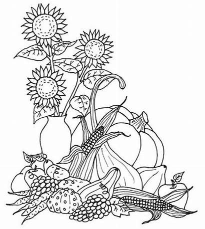 Coloring Autumn Pages Fall Sheets Printable Adults
