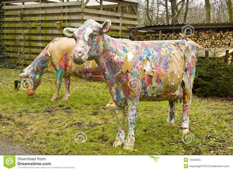 painted cows royalty  stock photo image