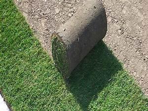 Gazon En Rouleaux : gazon en rouleaux ~ Farleysfitness.com Idées de Décoration