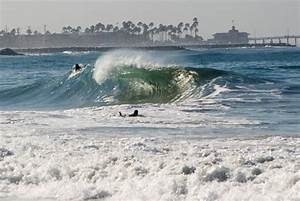 Five Sharky Locations That You Might Surf Anyway