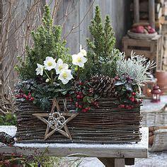 Weihnachtsdeko Fensterbank Bilder by Die 17 Besten Bilder Blumenkasten Fensterbank In 2017