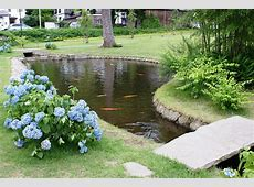 Backyard Fish Farming – Raise Fish In Your Home Pond