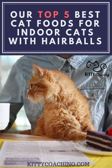 Our Top 5 Best Cat Foods For Indoor Cats With Hairballs (2018