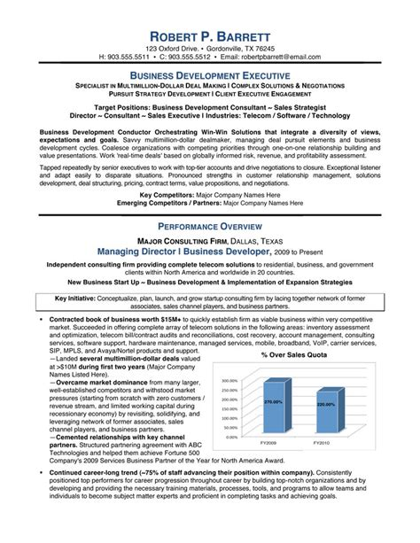executive summary resume sle free resumes tips