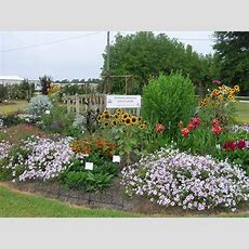 Where Can I Find An Aas Display Garden Allamerica