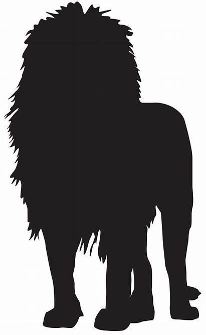 Lion Silhouette Transparent Clip Silhouettes Clipart Shadow