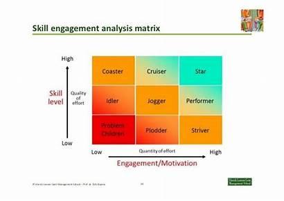 Matrix Engagement Skill Coaching Talent Management Grid