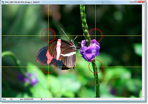 crop images  photoshop   rule  thirds