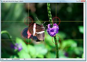 Crop Images In Photoshop With The Rule Of Thirds
