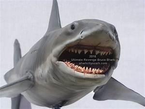 Image Gallery jaws the revenge shark