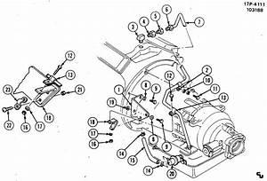 Modulator  U0026 Vacuum Line  Auto Trans