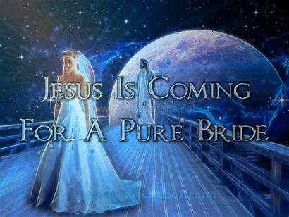 Bride Jesus Coming Pure Px Resolution Mb