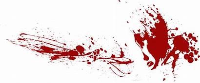 Ace Blood