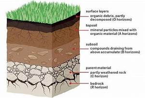 Flow Diagram Of Different Types Of Soil