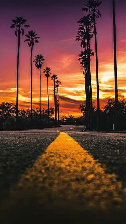Angeles Los Sunset California 4k Road Palms
