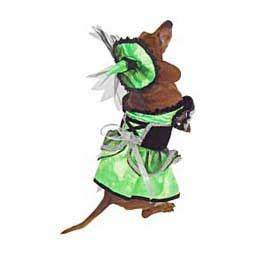 Neon Led Witch Pet Costume Rubbie s Costumes Apparel