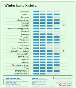 Winterharte Pflanzen Liste : kr uter winterfest machen ~ Eleganceandgraceweddings.com Haus und Dekorationen