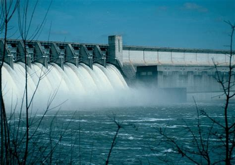 evaluating dam  operation  freshwater conservation