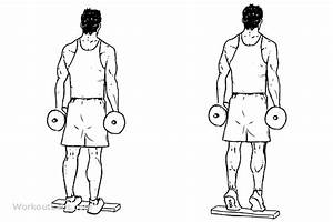 Standing Dumbbell Calf Raise | Illustrated Exercise guide ...