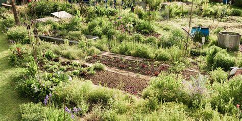 Bioterra Biogarten