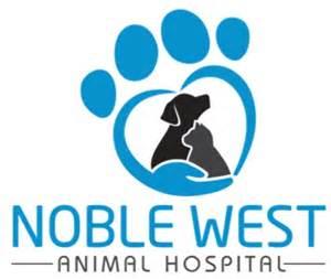 hazel dell animal hospital noble west animal hospital noblesville indiana