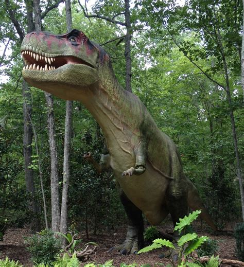 Cretaceous Period Dinosaurs Dinosaurs Pictures And Facts