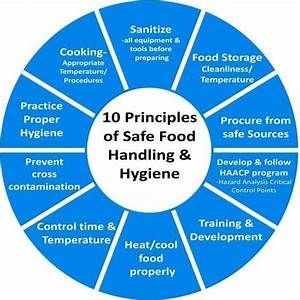 What Are Some Principles Everyone Should Know About Food
