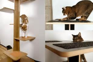 modern cat furniture interesting and modern cat trees design for your lovable