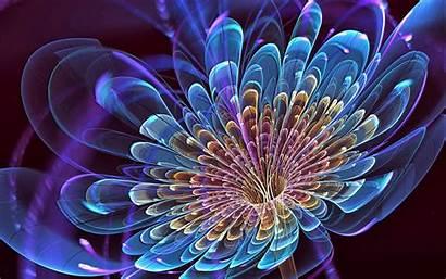 Bunga Cantik Gambar Keren Wallpapers Abstract Rose