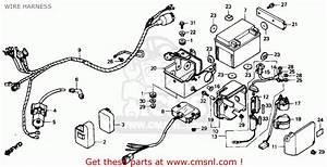 Honda Trx 250 Wiring Diagram