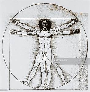 An 18th-century Diagram Based On Leonardo Da Vinci U0026 39 S Drawing Of    News Photo