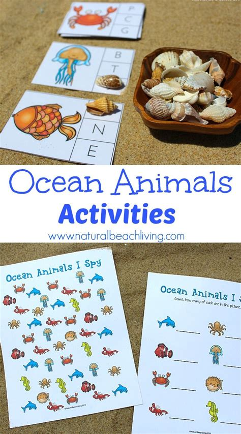 preschool ocean theme the best animals preschool activities and printables 906