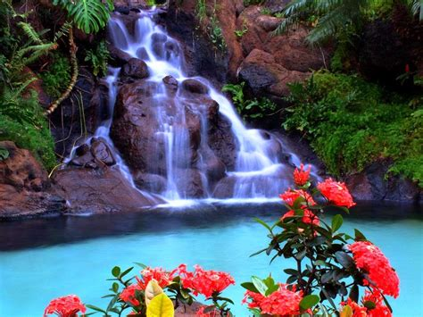 Free Waterfall Wallpaper Animated - animated waterfall wallpaper 31 pictures
