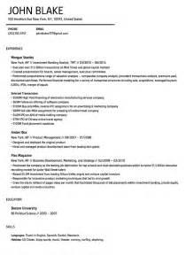 Resume Template Builder Resume Builder A Resume Velvet