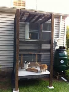 diy outdoor cat enclosure best 25 outdoor cat tree ideas on diy cat