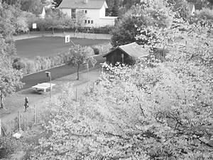 Herbst Schwarz Weiß : herbst schwarz wei bild foto von vicky aus bayerische alpen fotografie 19345175 ~ Orissabook.com Haus und Dekorationen