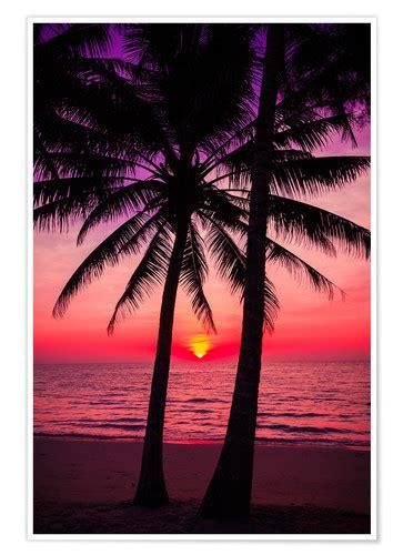 palmen und tropischer sonnenuntergang poster