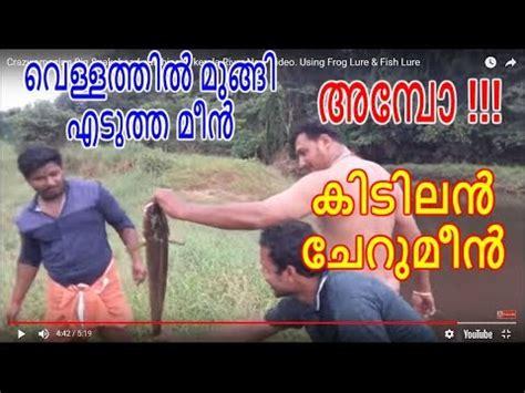 crazy amazing big snakehead catching  kerala river