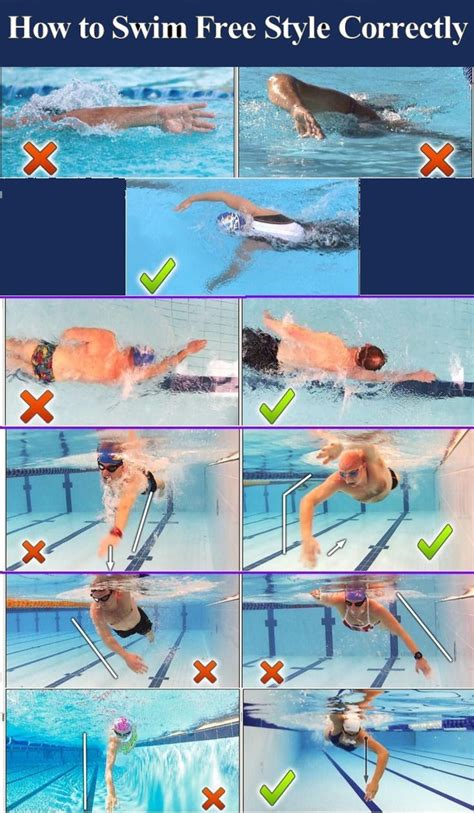 How To Swim Free Style Correctly Pictures, Photos, and