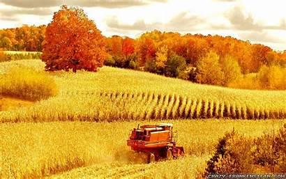 Autumn Scenes Crazy Wallpapers Frankenstein Harvest Widescreen