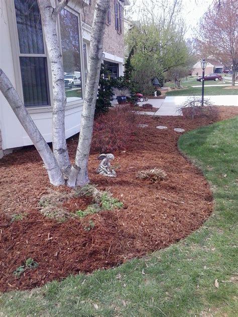 landscape job  pine straw mulch  bed maintenance