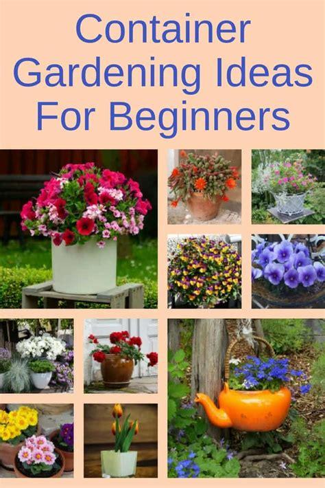 container gardening ideas for beginners backyard garden