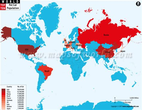 Countries With Most Pet Cat Population  World Top Ten