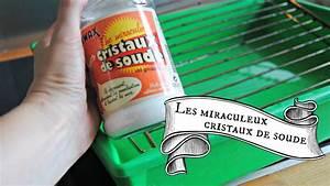 Nettoyer Canalisation Avec Cristaux De Soude : comment nettoyer une grille de four ou de barbecue ~ Melissatoandfro.com Idées de Décoration