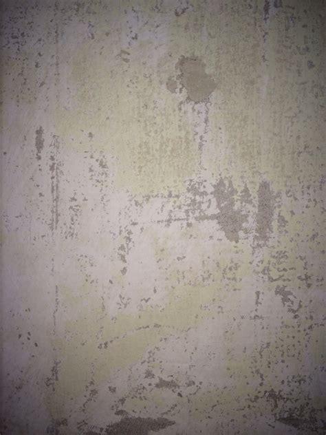 paint diynot forums