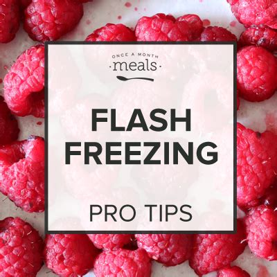 flash freezing flash freezing once a month meals